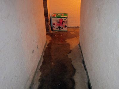 Gut gemocht Schimmel im Keller: Sachverständige zeigt, wo es schimmelt XI12